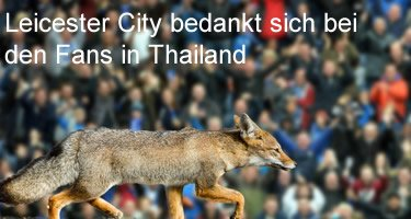 Leicester City Thailand
