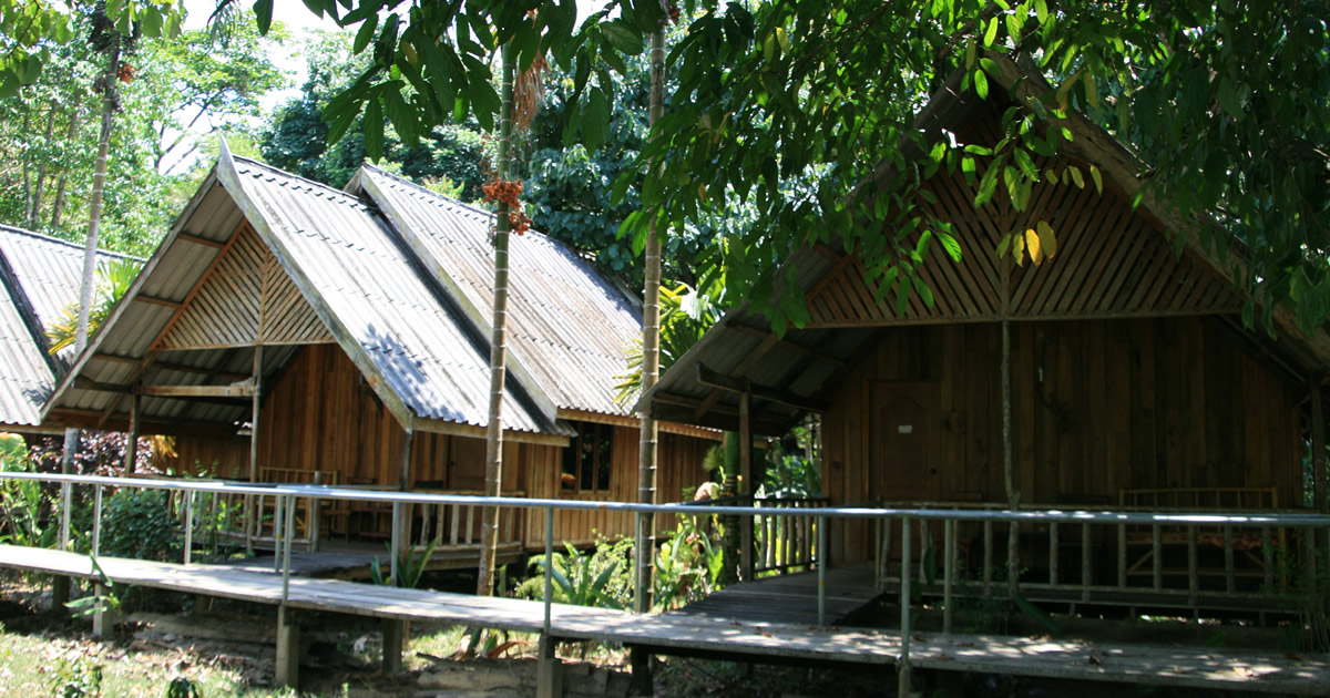 Khao Sok Riverside cottage3