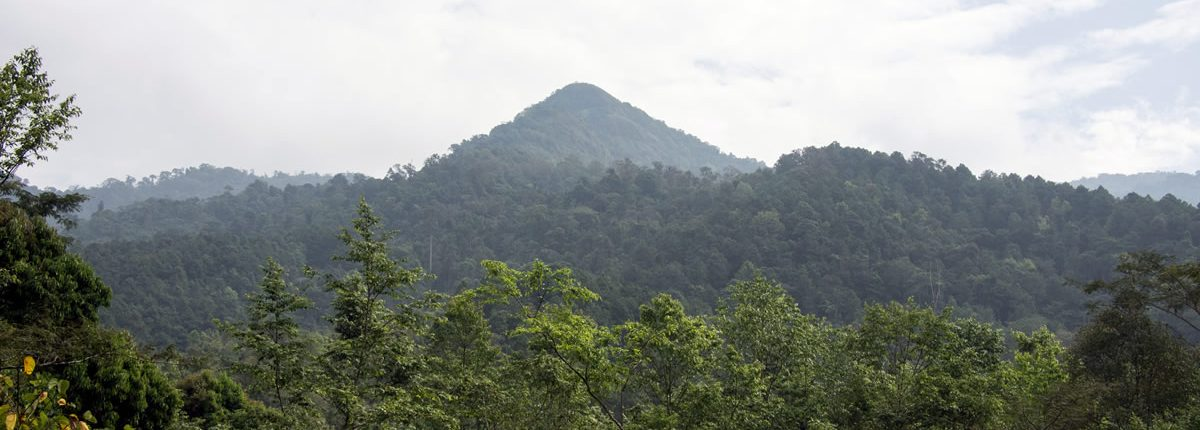 Doi Phu Kha Nationalpark