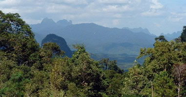 Khao Sok Mountains