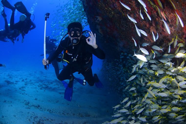 Lerne tauchen PADI Open Water Course