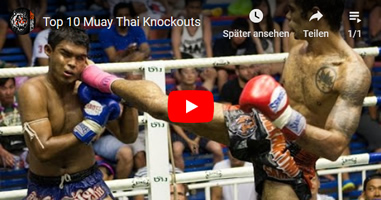 Videos Muay Thai Thailand